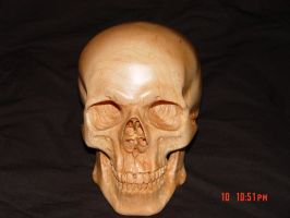 Carved skull in Rock Maple by WaterwalkerWoodworks