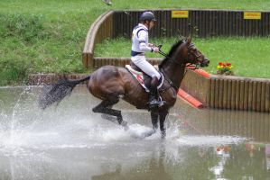 3DE Cross Country Water Obstacle Series X/21 by LuDa-Stock