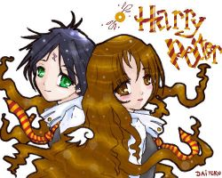 Harry and Hermione by efc