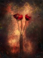 Red flowers by JanaHart