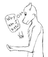 Why by XylerTheWolf