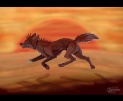 Throw Sand against the wind by RonTheWolf