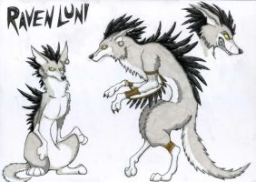 Raven Luni Character Sheet by CuriousCreatures