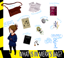Bag Meme by VikingMera