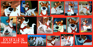 Dodger From Oliver And Company Collage by Scamp4553