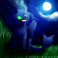 Kiba The Night Fury by ZoroarkQueen