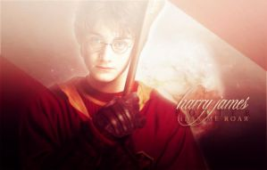 Harry J. Potter. by julruz