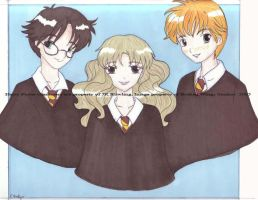 Harry Potter Trio by Chibiusa14