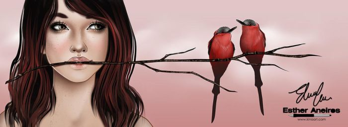 Red Birds Vr2 by kina84