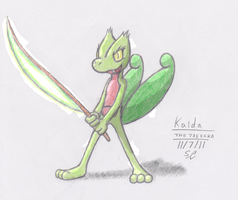 Kaida the Treecko by Rukario-kun