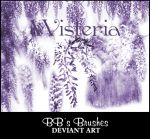 Wisteria by BBs-Brushes