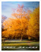 Last Colors 2 by AiviTo