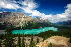 Peyto Lake by porbital