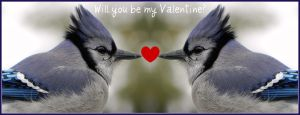 Will you be my Valentine? by Lou-in-Canada