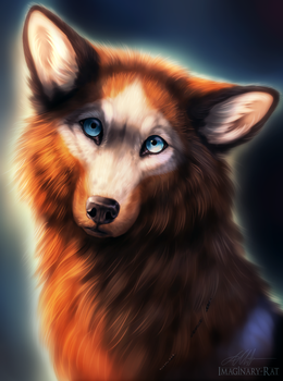 Wolfie (+video) by Imaginary-Rat