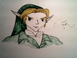Link by TheyCallMeDanger