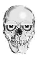 NEW SKULL ID by DIGIZOOM