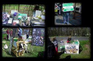 Earth Day Festival PAVA Stand by wahyawolf