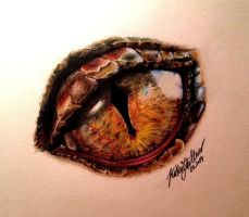 Eye of Smaug, the Terrible! by SilkSpectreII