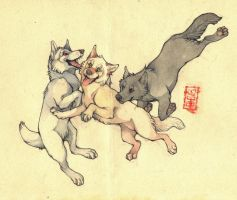.:Gift - Wolf trio:. by 25Nanao16