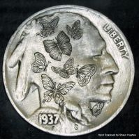 'Butterflies' Hand Engraved by Shaun Hughes by shaun750