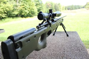 .243 bolt action by pringle753