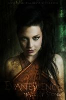 Evanescence - Made Of Stone by catherine2207
