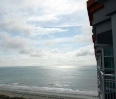 Sunny on The Ocean Front by annieheart12