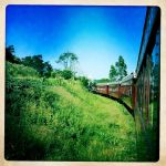 And goes the train by tokarnia