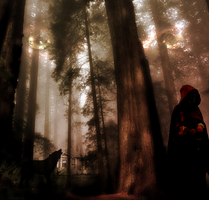 Fairy Tales - Red Riding Hood by droo216
