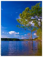 Cagles mill lake side by bad95killer