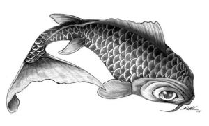 Final Koi Fish Drawing by Gorillastrations