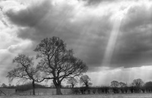 Light rays by mikeholman
