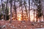 The Sunset by VTAL
