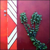 heart shaped by herbstkind