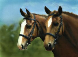 Just the two of us by AlexanderLevett