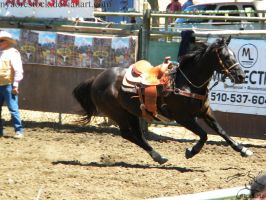 Rowell Ranch Rodeo - 14 by Nyaorestock