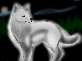White wolf by Birdwing521