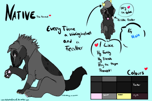New Native Reference Sheet by LordNative