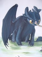 Toothless And Hiccup 4 by PossumPip-Creations