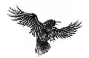 crow tatt by Rieter