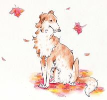 Ah, I missed you, Borzoi by nanaphiroth