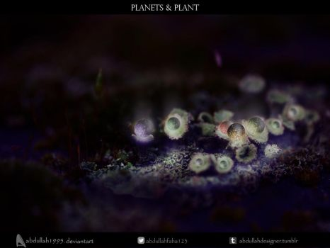Planets and Plant by ABDULLAH1995