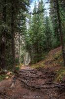 Colorado River Trail -C53-0644-2 by abstractcamera