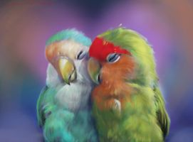 Love bird PS by nosoart