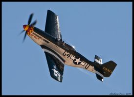 Nellis P-51 2010 by AirshowDave