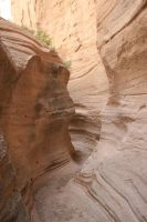 canyon 14. by greenleaf-stock