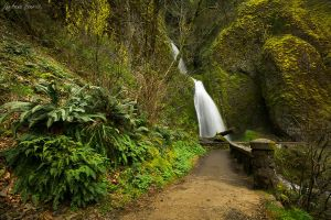 Wahkeena Walk by LAlight