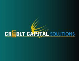 CREDIT CAPITAL SOLUTIONS LLC by negii-ii