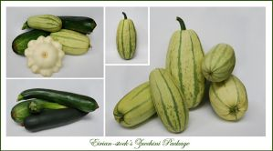 Zucchini Package by Eirian-stock